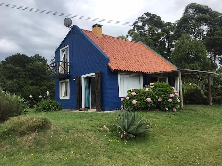Casa Azul en San Francisco