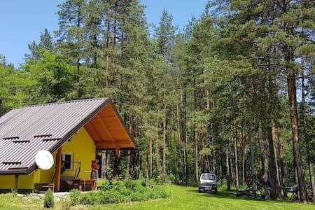 Bosnia Mountain Home