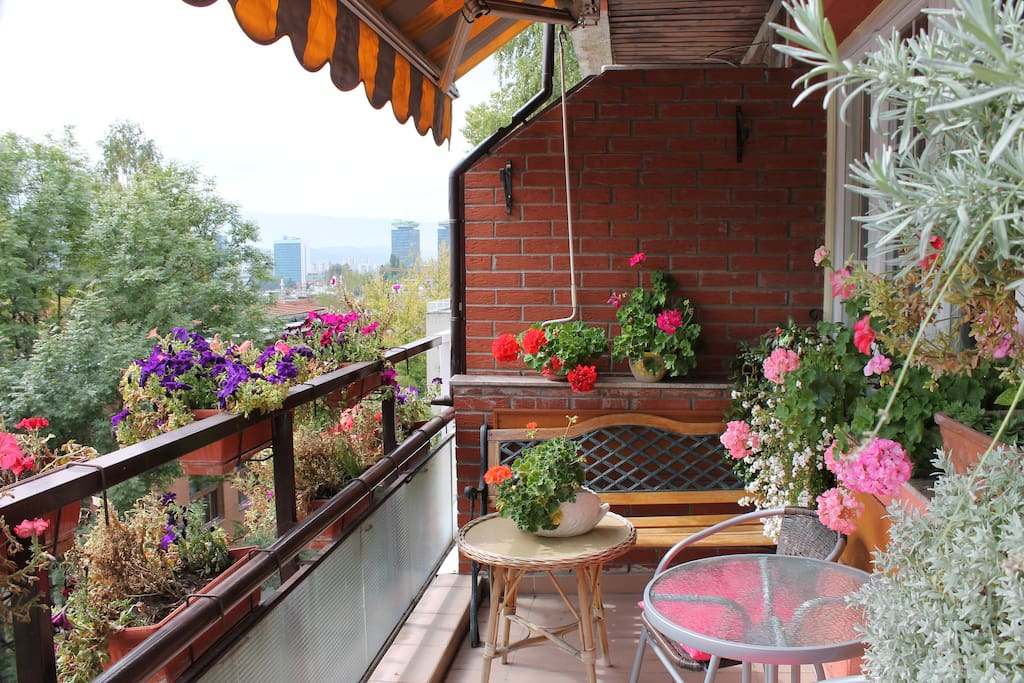 Amazing terrace with a lot of flowers.