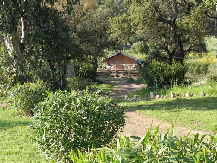 """Tente safari """"Bavella"""" avec accès privé à la plage"""