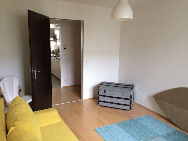Central and cosy room close to the beautiful Isar - Munique - Apartamento