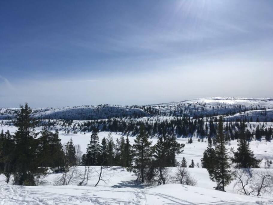 Utsikt fra hytten mot Varden.