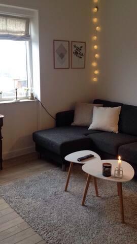 Cosy apartment in hip area - København  - Apartment