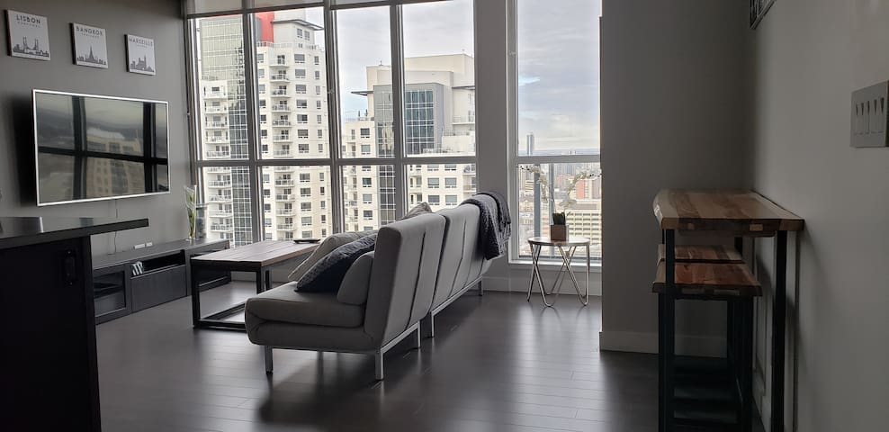 Modern 2 bedroom 2 bath condo downtown