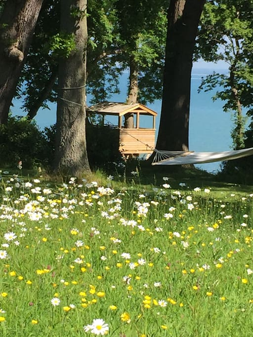 Tree House and Hammock in the Garden