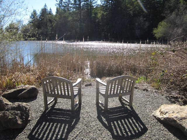 100 yard pond on the property with scenic sitting spots