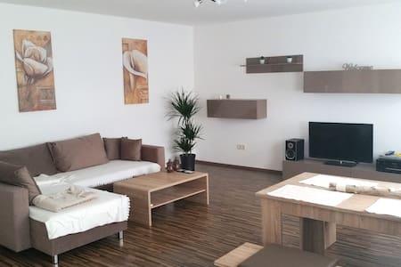 2-Zi.-Wohnung m. Terrasse, 15 Min. nach Heidelberg - Lejlighed