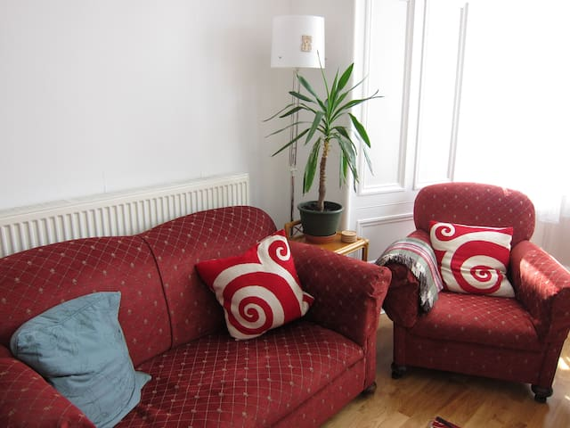 Bright spacious flat for Fringe visitors - Edimburg - Pis
