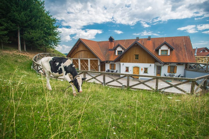 2. Apartment farm Matijovc - surrounded by nature