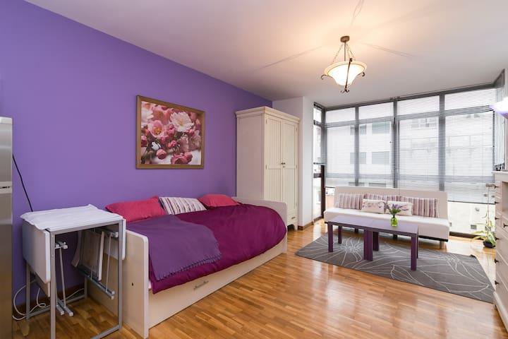 Acogedor estudio en el centro de Oviedo, Asturias - Oviedo - Apartament