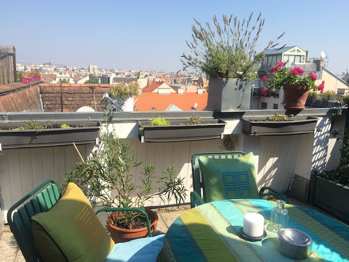 NEW renovated Flat with Rooftop Terrace Schönbrunn