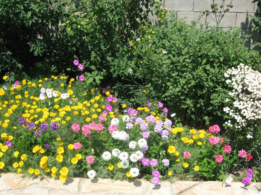 Lovely flowerbeds