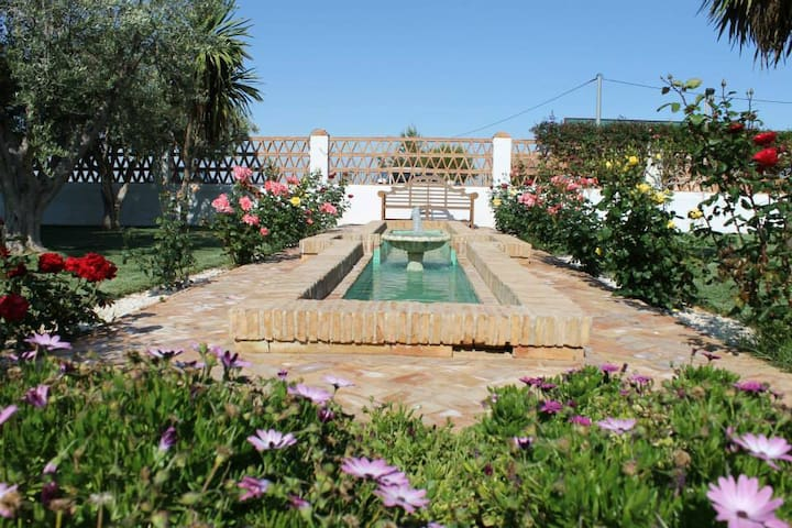 El Coto Rural Cottage - Murcia - Chalet