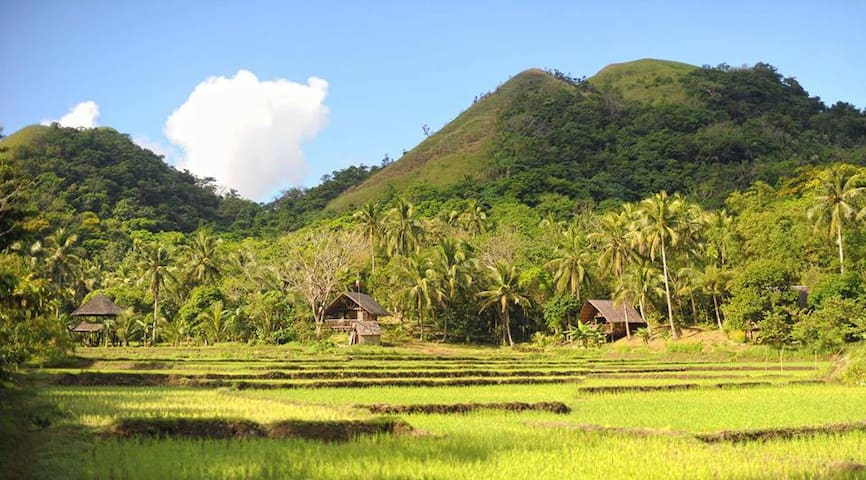 Countrified living - HARONG BABBO - Caramoan - Barraca