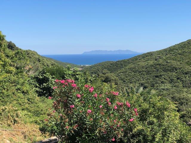 Au bout du monde  vue imprenable sur l'île Caprai