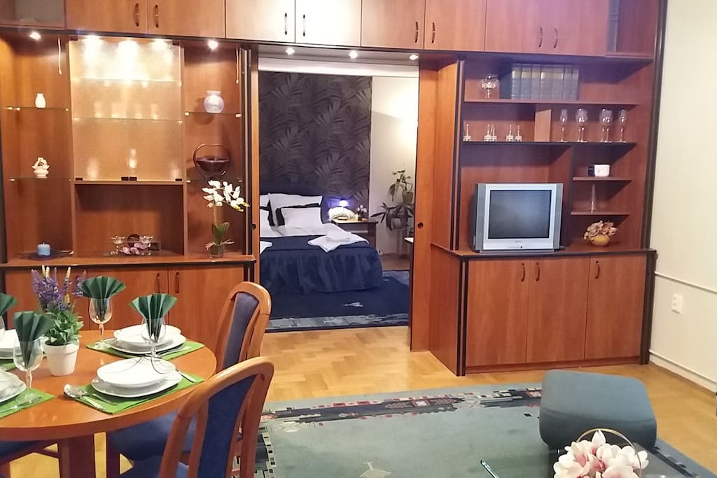 Living room bedroom