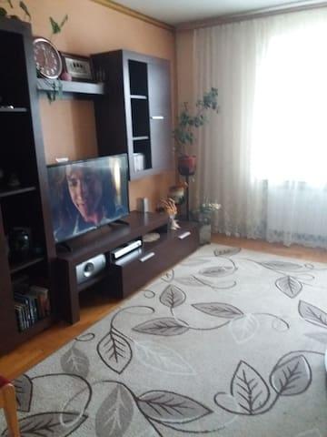 Das Wihnzimmer, wo der Gast übernachten kann. Es gibt ein grosses Sofa hier
