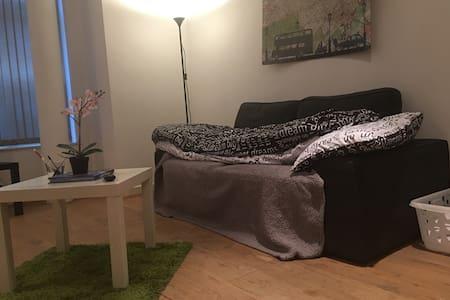 Cozy couch in central Brum - 버밍험(Birmingham)