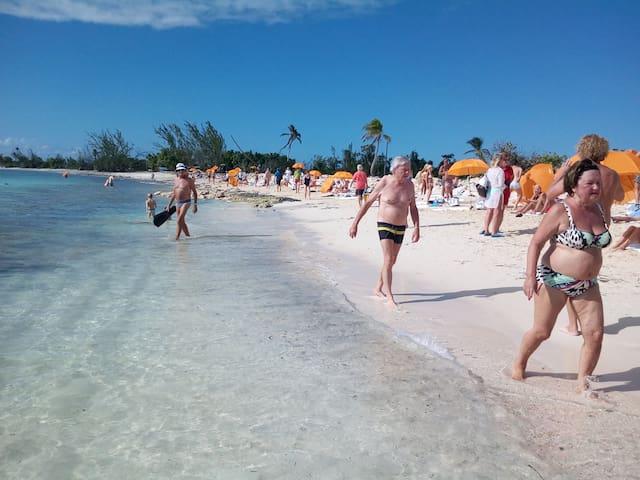 Bush Life - Eat, Play, Sleep in Bahamian Paradise