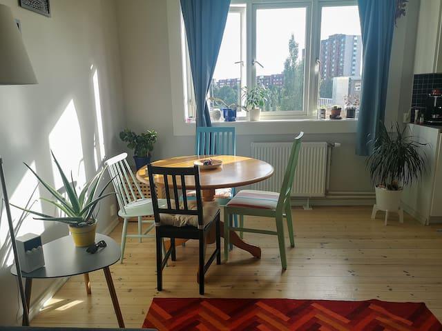 Cozy and spacious apartment in Torshov.
