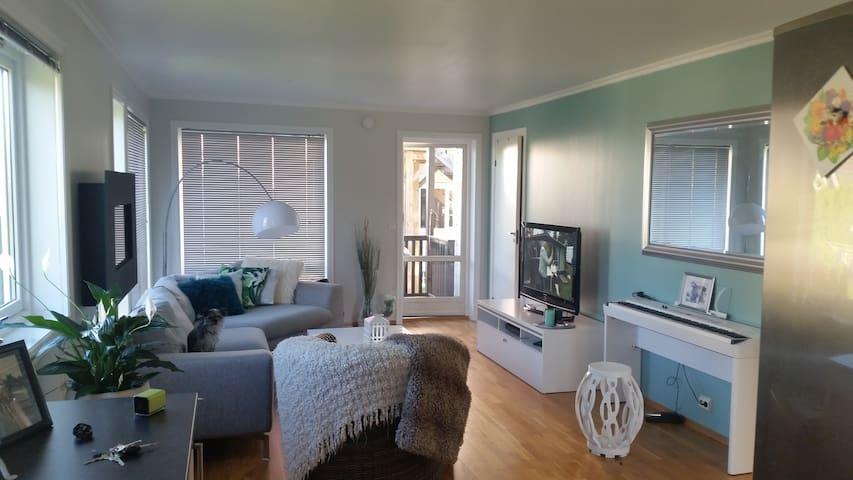 Sentru(SENSITIVE CONTENTS HIDDEN)ær leilighet med egen parkering - Skien - Apartment