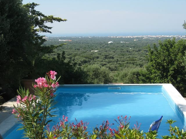 alla panoramica - Monopoli - Bed & Breakfast