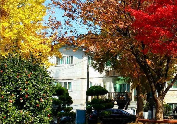 Cosy and Modest House near Park 방 두개 단독집