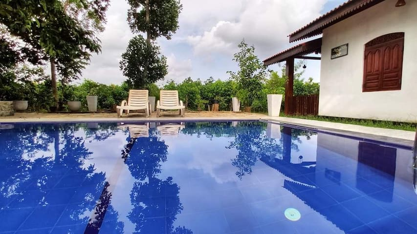 Private cottages with pool surround by nature