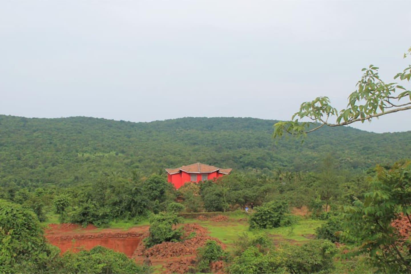 Valley View From The Back Side of the bungalow 'Bharadwaj'