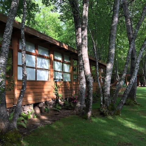 Casa coordillera Curicó en Bosque Nativo