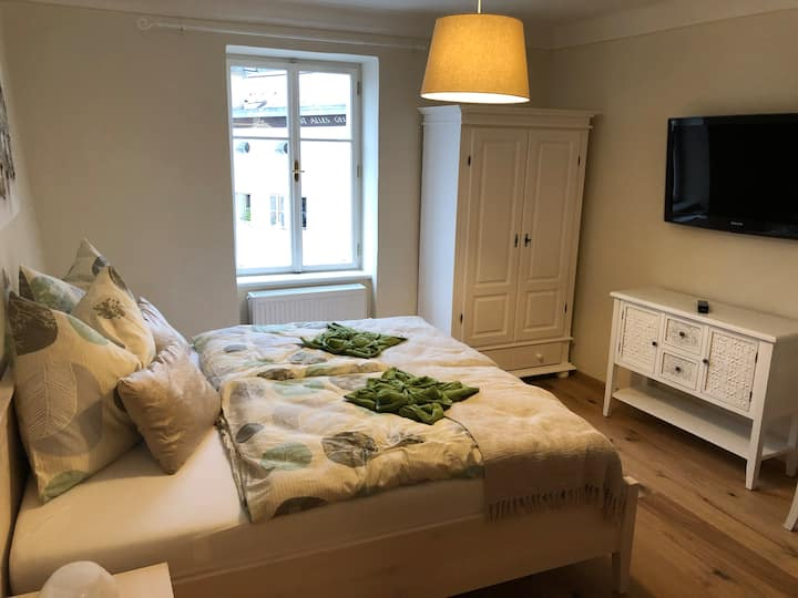 Renovated apartment in the heart of Salzburg