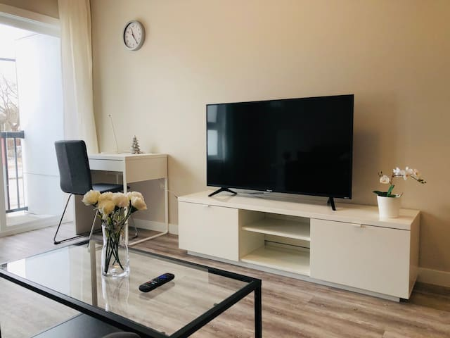 ★Luxury Modern 2BR Condo in UoM★Free Parking ★