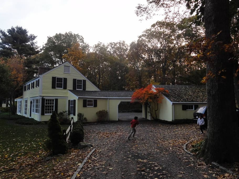 Rooms For Rent In Mount Kisco