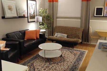 Private West Side Ann Arbor 2 BD Suite - Ann Arbor - Pis
