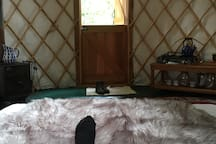 5* Yurt near Bath