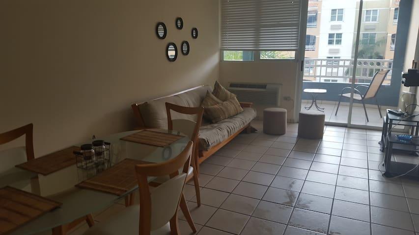 Living & Dinning room. Including full futon.