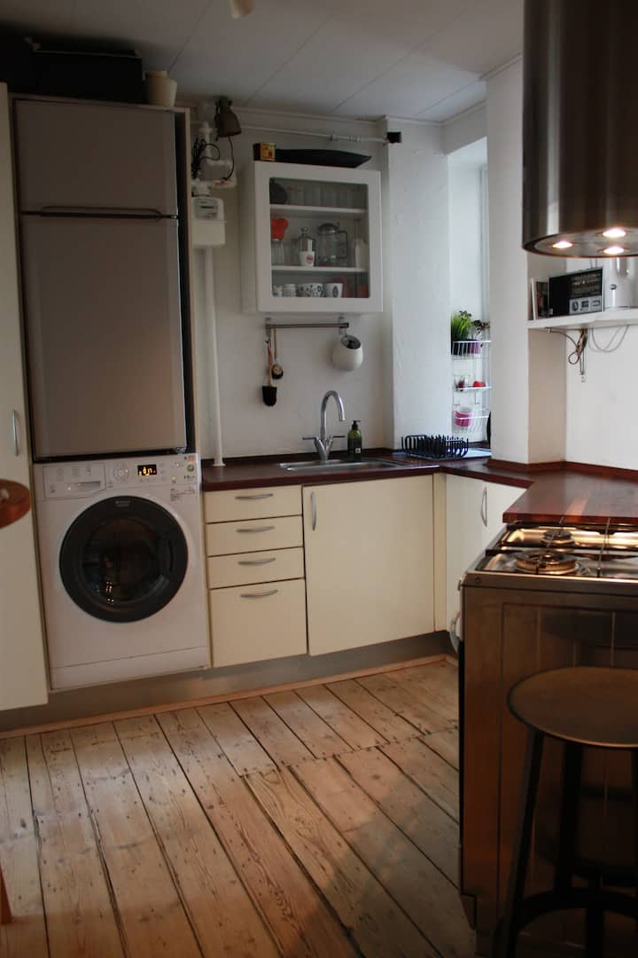 Room in central CPH close to main central station