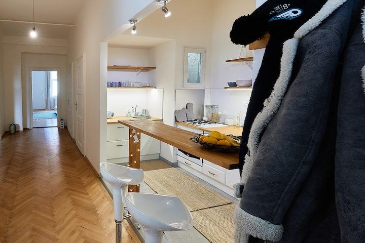 Nice renovated Apartment/center of Bratislava/view