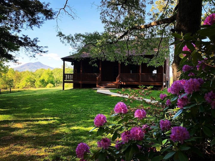 Julie's Cabin, Private/Secluded, Peaceful Paradise