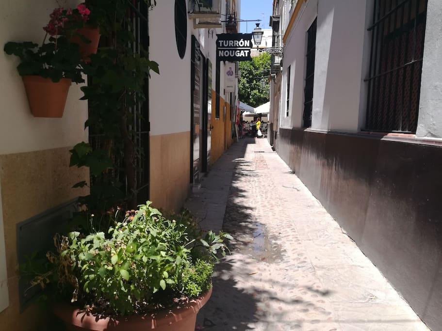 Calle Susona.Plaza de Doña Elvira.Barrio Santa Cruz