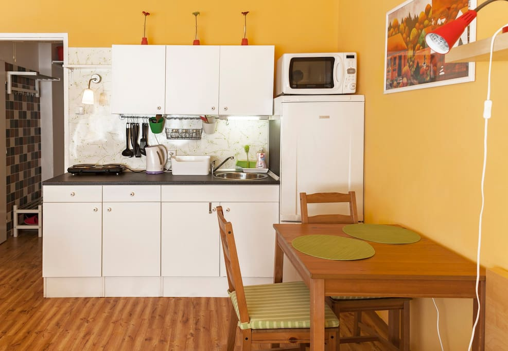 Equipped kitchen with cooker, microwave oven and fridge. Dishes included