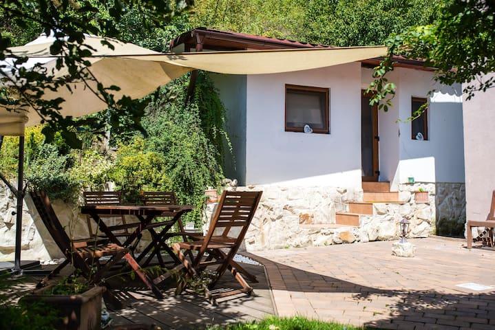 Tiny house with garden
