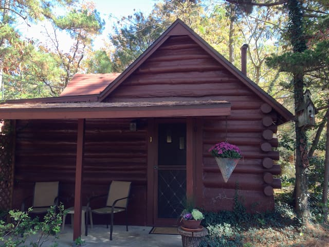 Historic Log Cabin Close to Downtown