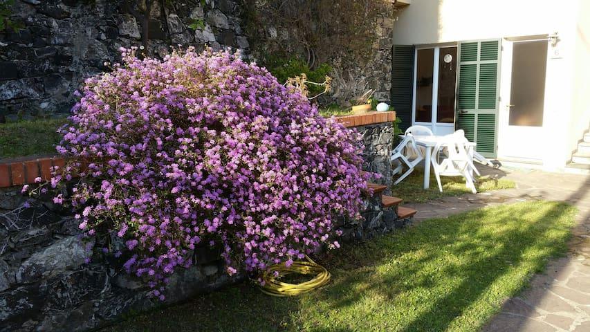 Appartamento con giardino a pochi passi dal mare