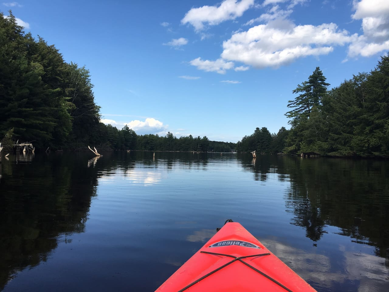 Kayak into the bay to enjoy the tranquility of nature