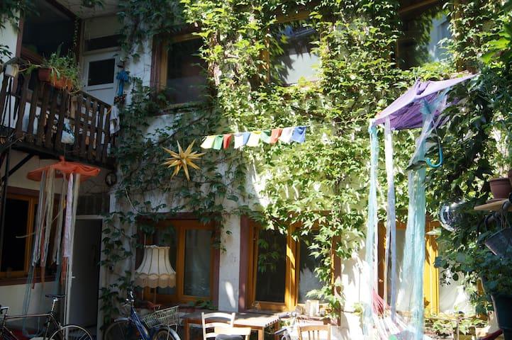 Kleine Wohnung, schöner Hinterhof, zentrale Lage - Trier - Lägenhet