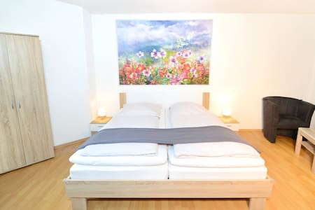 Apartment  Strasbourg-Europapark-Schwarzwald  70sq