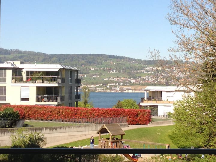 Modern living with lakeview of zurichsee