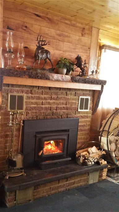 A cozy fireplace for cold winter days and relaxation any day!