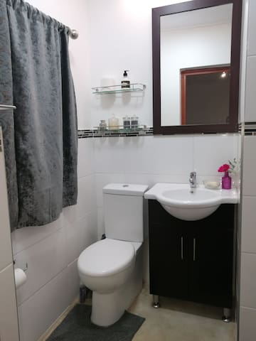 Bathroom with toilet, basin and shower